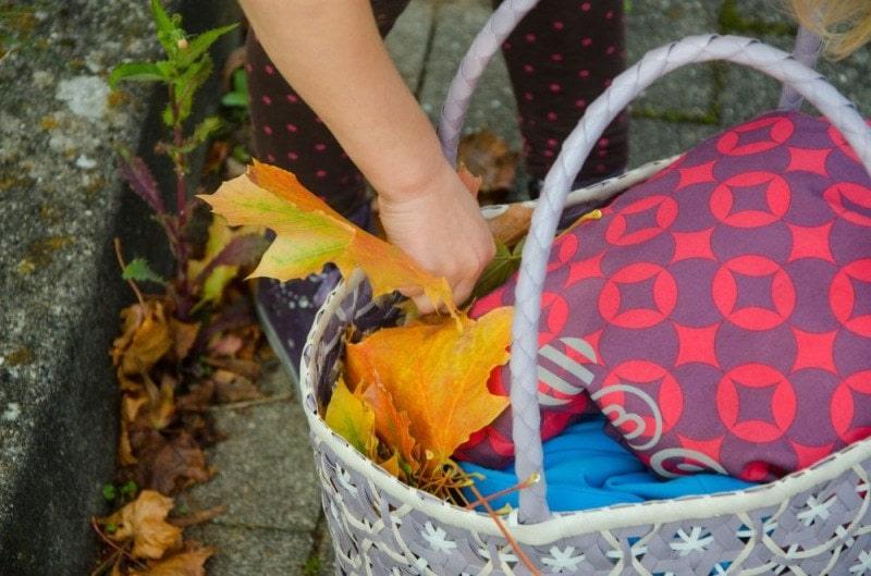 Herbstblätter sammeln 3