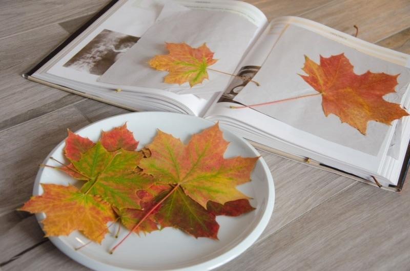 Masking Tape Herbstbaum 1
