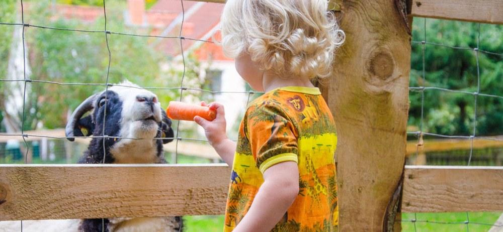 Tierpark Raisdorf 10