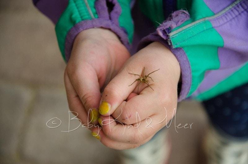 Lilli mit Spinne