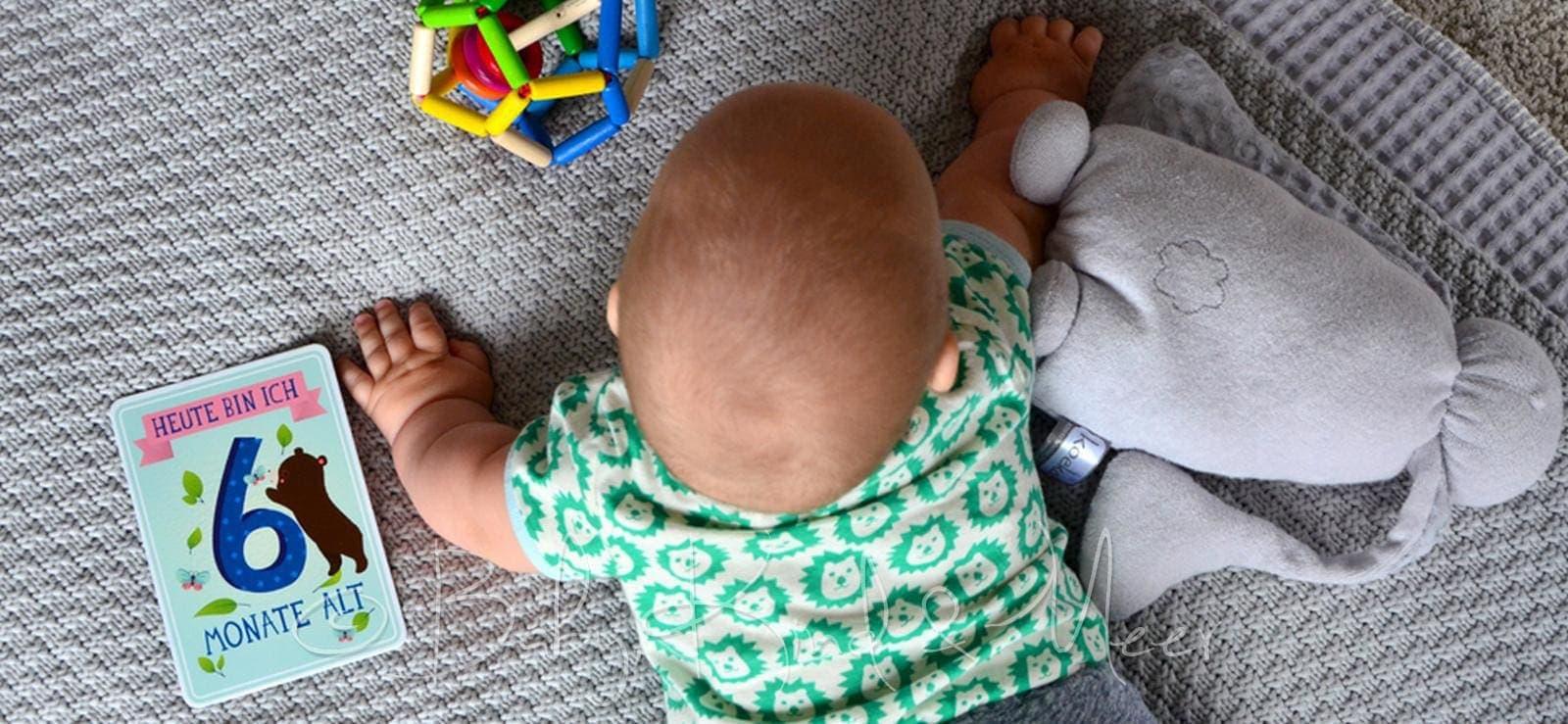 Ein halbes jahr tom erfahrungen baby kind und meer