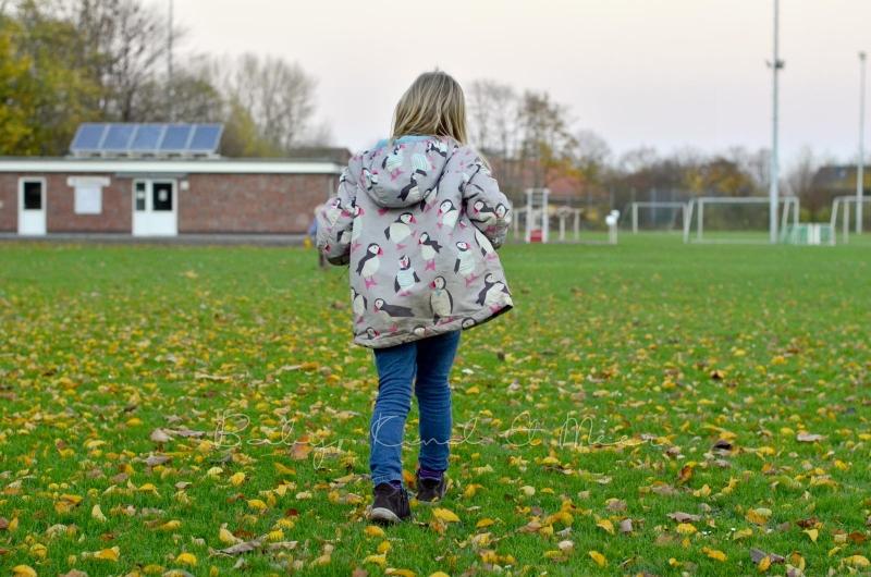 Herbstspaziergang (2)