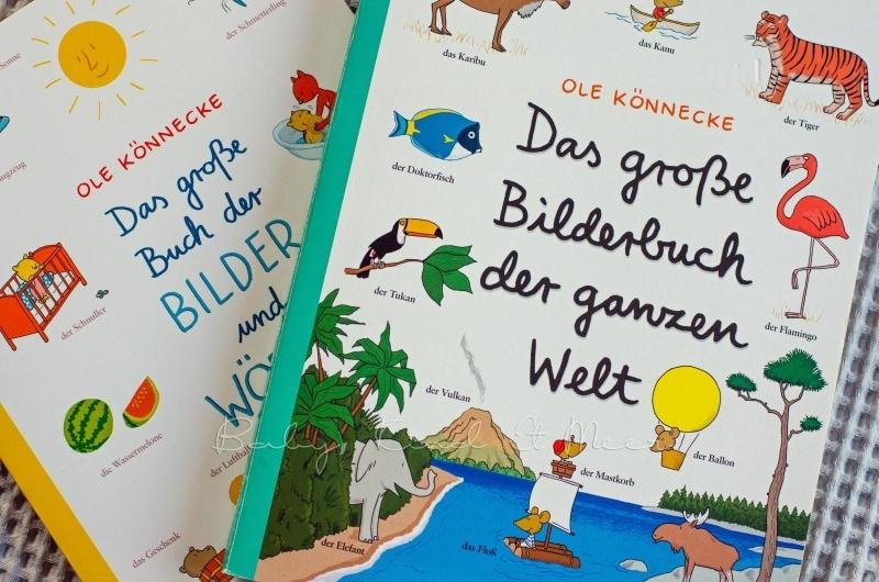 Das grosse Bilderbuch der ganzen Welt