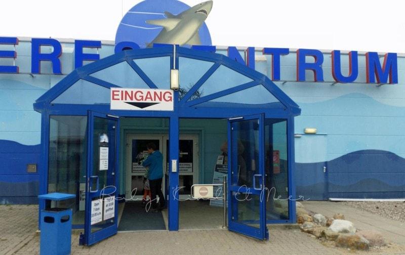 Meereszentrum Fehmarn (2)