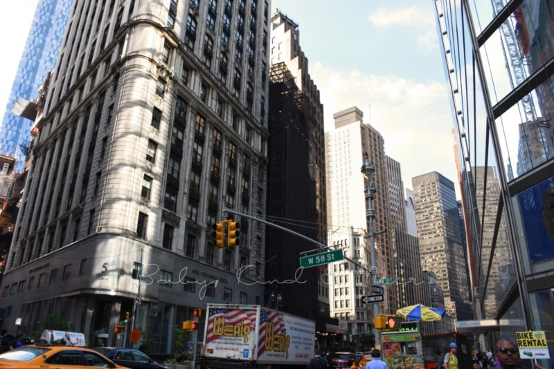 New York (24)