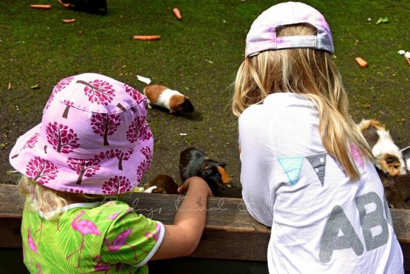Ausflug Tierpark Hagenbeck (10)