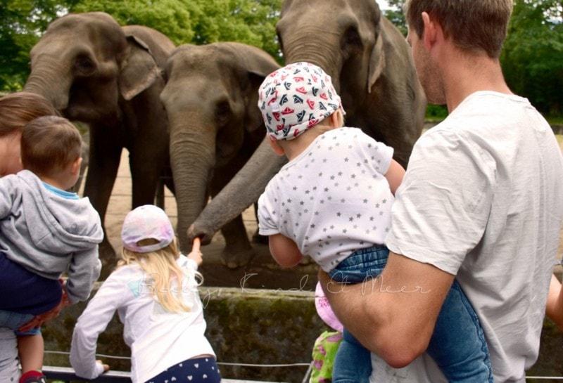 Ausflug Tierpark Hagenbeck (2)