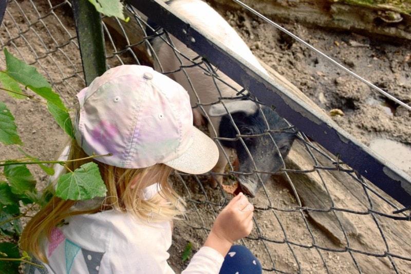 Ausflug Tierpark Hagenbeck (21)