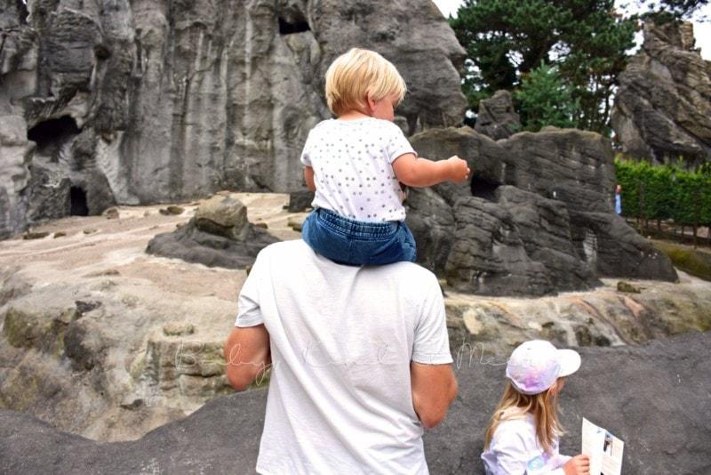 Ausflug Tierpark Hagenbeck (22)