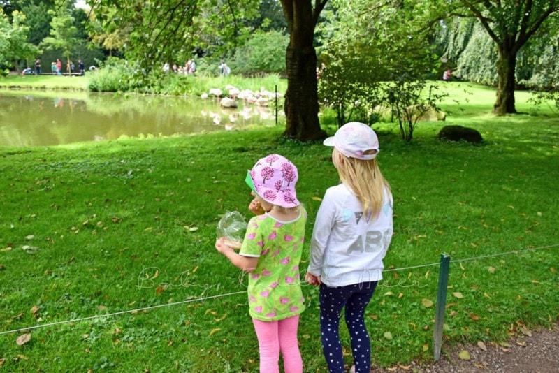 Ausflug Tierpark Hagenbeck (7)