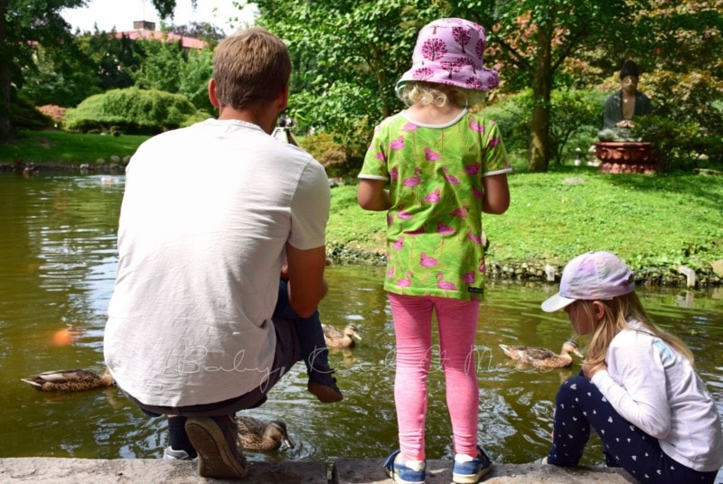 Ausflug Tierpark Hagenbeck (8)