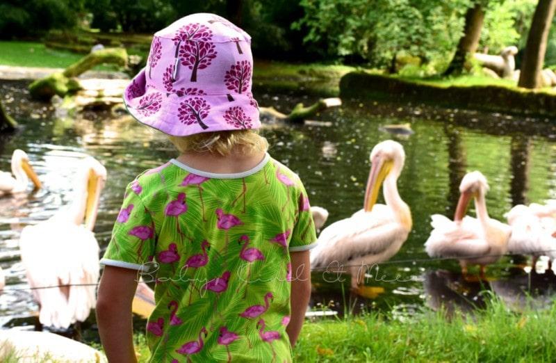 Ausflug Tierpark Hagenbeck (9)