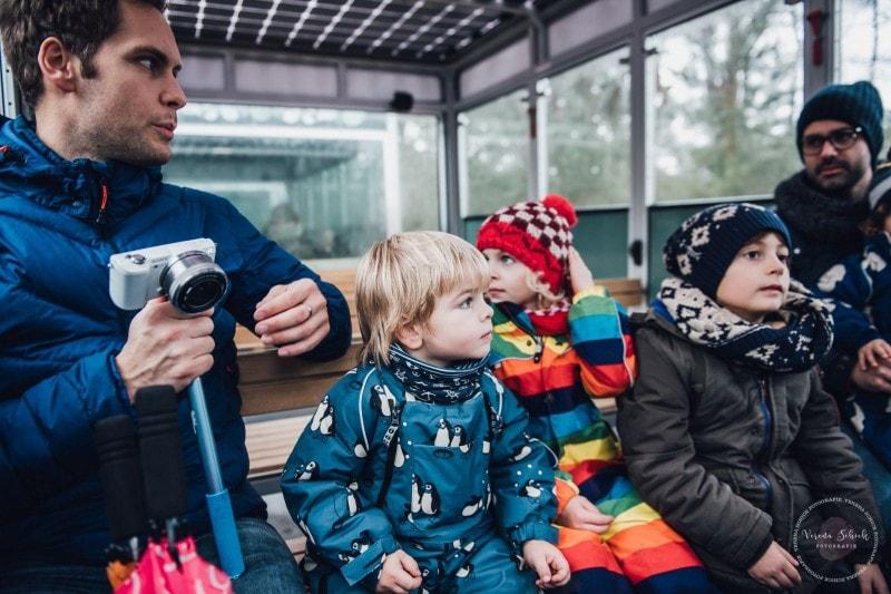 Efteling Freizeitpark Winter Silvester 35