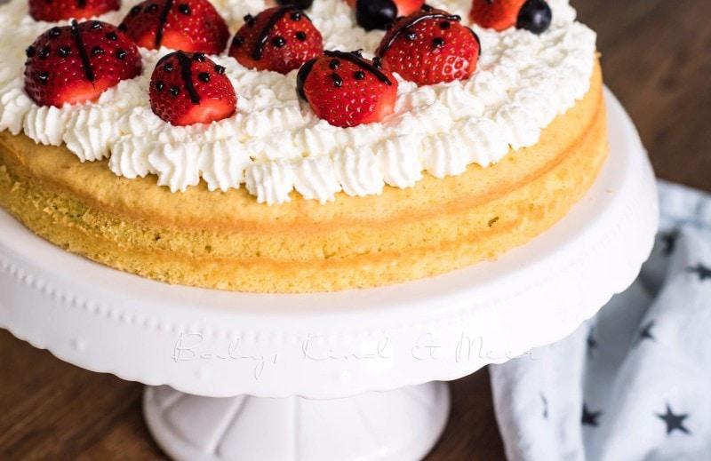 Marienkaefer Torte 9