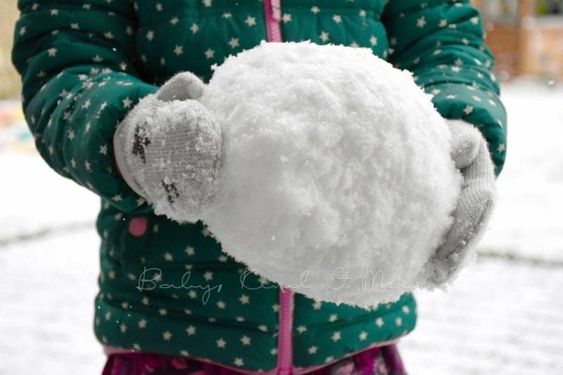erster Schnee im Garten 3