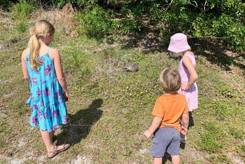 Florida mit Kindern 43
