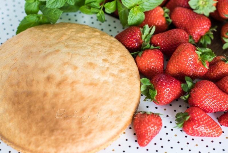 Erdbeer Tiramisu Torte Rezept 4