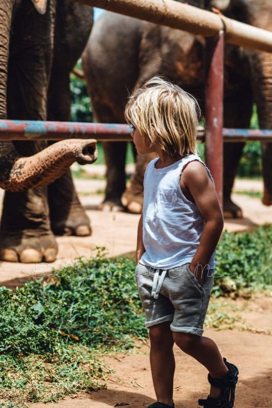 Thailand Koh Samui mit Kindern 139