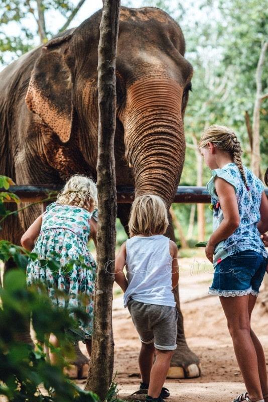 Thailand Koh Samui mit Kindern 140