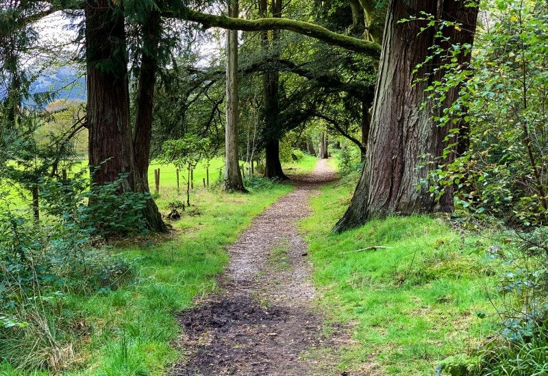 Rundreise durch Schottland 159 1