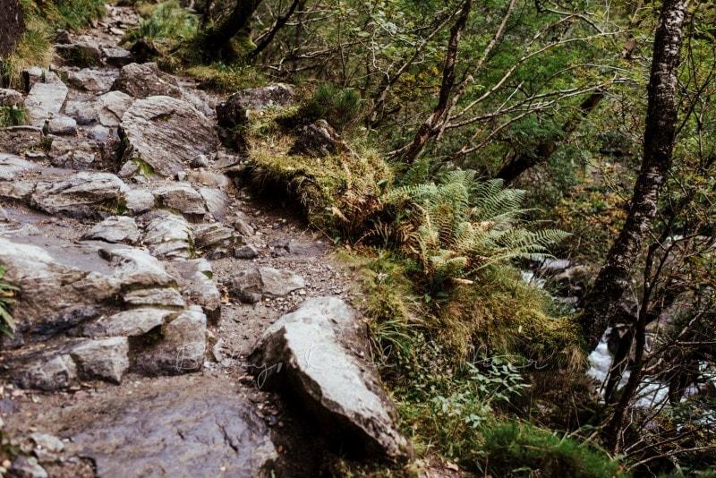 Rundreise durch Schottland 314