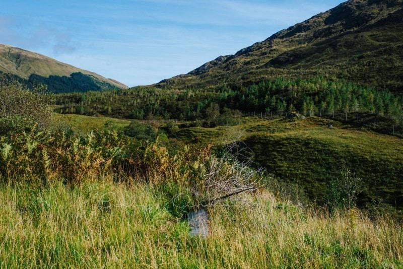 Rundreise durch Schottland 337