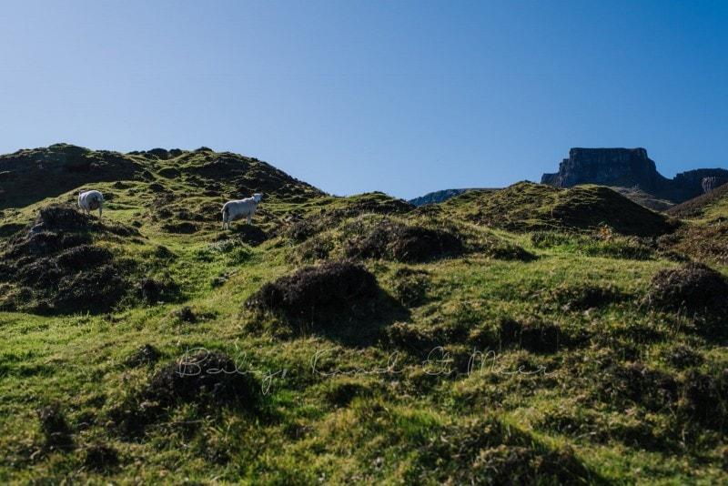 Rundreise durch Schottland 358