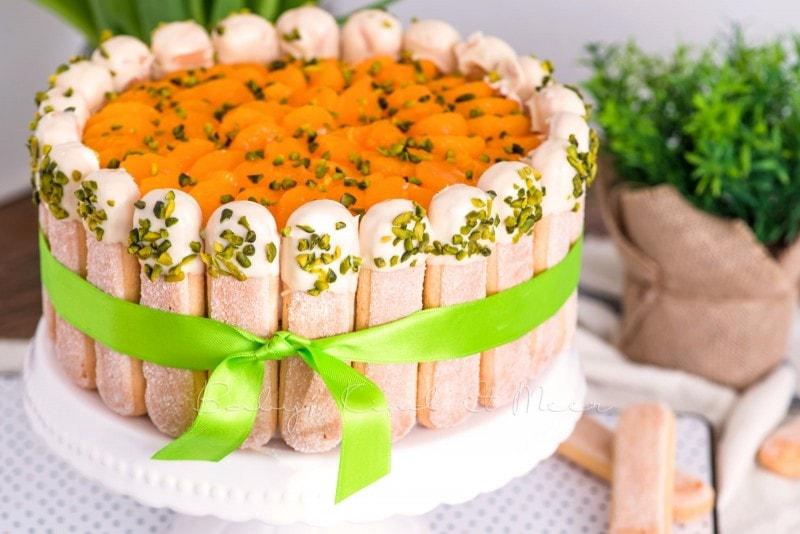 Mandarinen Mascarpone Tiramisu Torte babykindundmeer 18