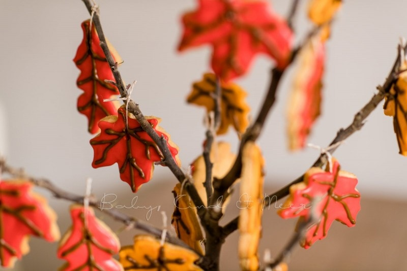 Rezept Herbst Keks Baum babykindundmeer 14